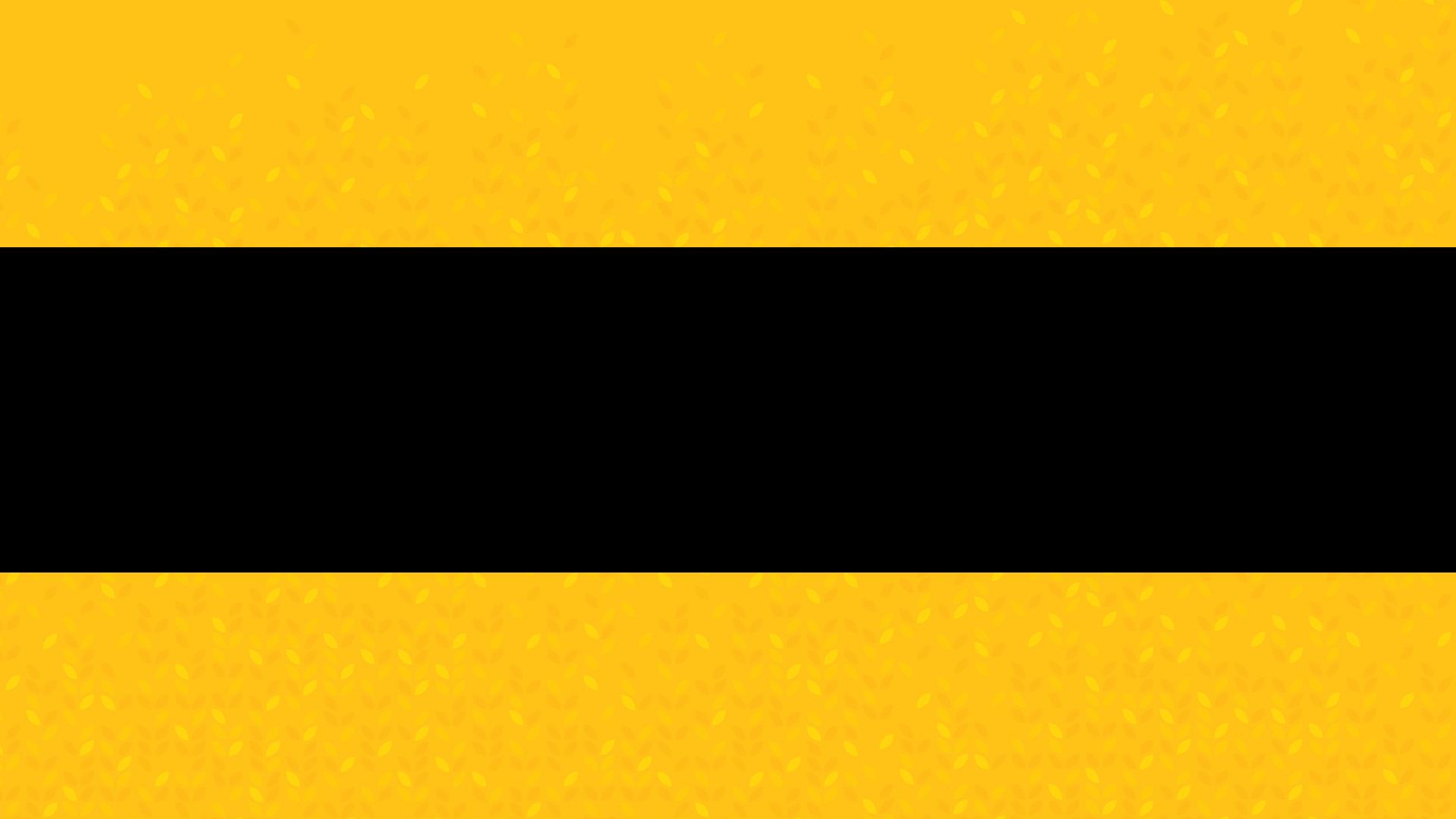 CMD-Blank-Slide